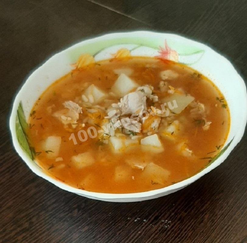 Порция супа Харчо с курицей